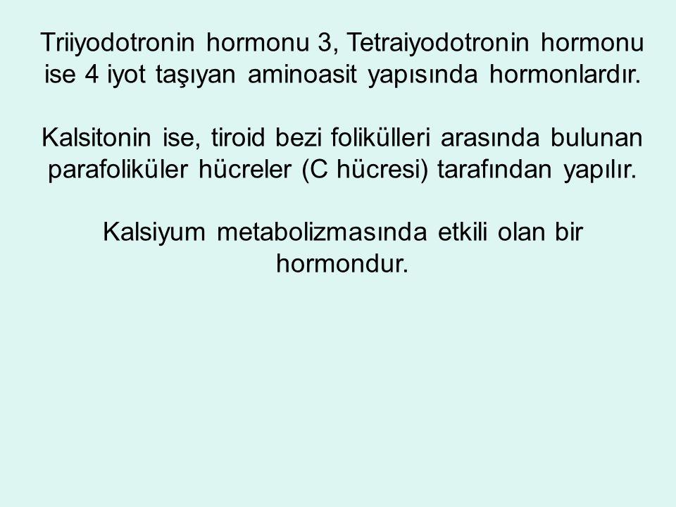Triiyodotronin hormonu 3, Tetraiyodotronin hormonu ise 4 iyot taşıyan aminoasit yapısında hormonlardır.