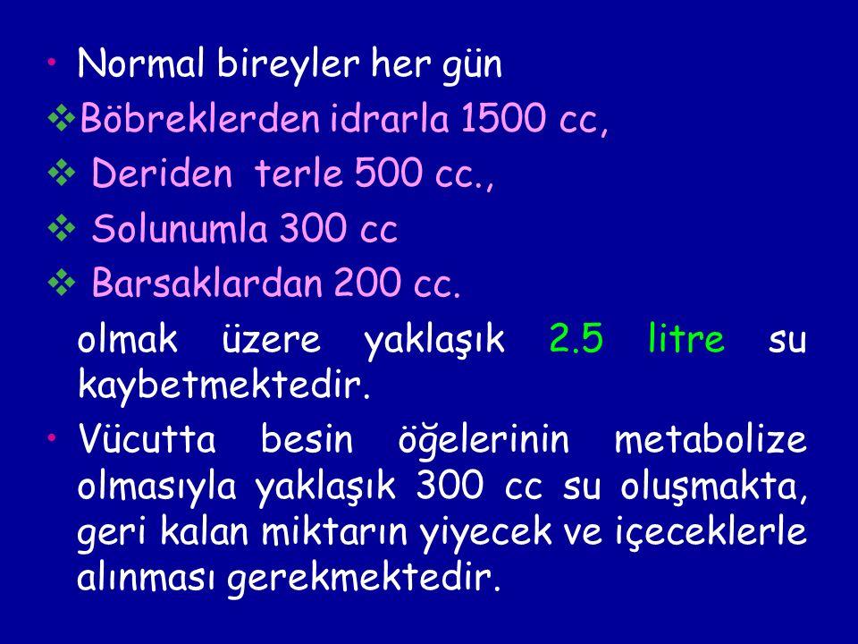 Normal bireyler her gün  Böbreklerden idrarla 1500 cc,  Deriden terle 500 cc.,  Solunumla 300 cc  Barsaklardan 200 cc.