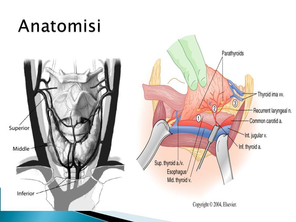  Antitiroid ilaçlar ve radyoaktif iyot ile yapılan hipertiroidzm  Hemoraji olasılığı  Guatrın çevredeki dokuya bası yapması  Kozmetik nedenler  Tiroid kanseri
