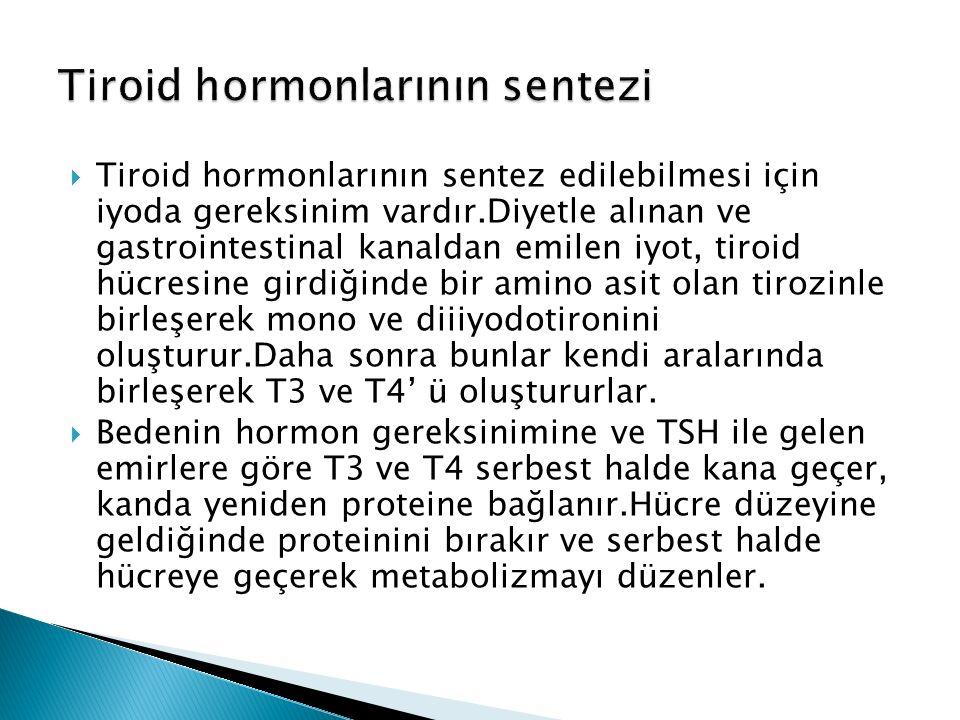  Tiroid hormonlarının sentez edilebilmesi için iyoda gereksinim vardır.Diyetle alınan ve gastrointestinal kanaldan emilen iyot, tiroid hücresine girdiğinde bir amino asit olan tirozinle birleşerek mono ve diiiyodotironini oluşturur.Daha sonra bunlar kendi aralarında birleşerek T3 ve T4' ü oluştururlar.