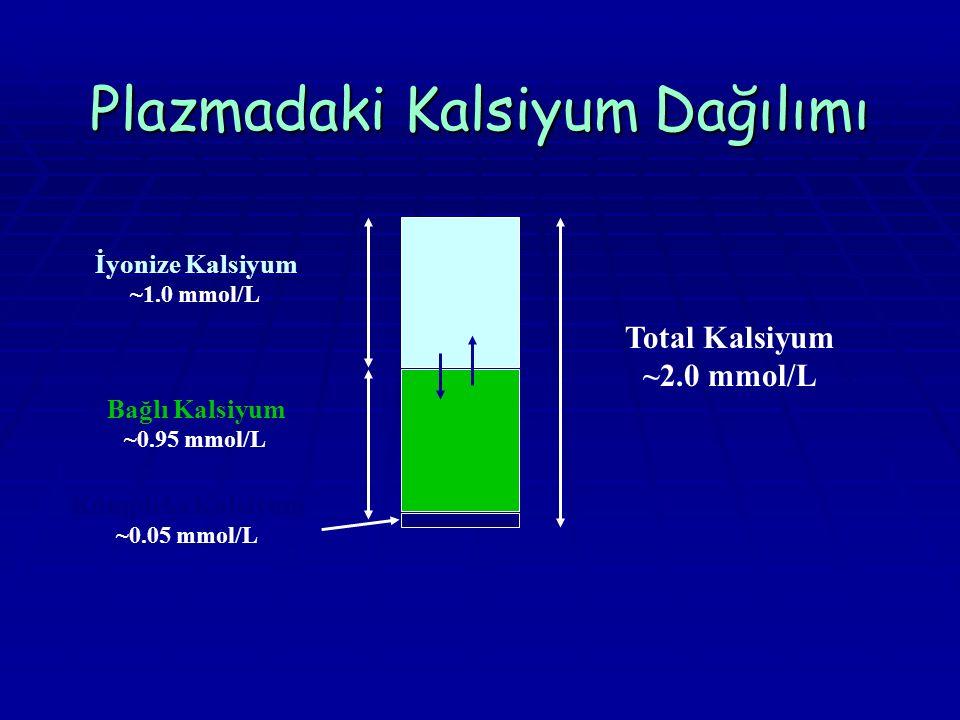 Plazmadaki Kalsiyum Dağılımı Total Kalsiyum ~2.0 mmol/L İyonize Kalsiyum ~1.0 mmol/L Bağlı Kalsiyum ~0.95 mmol/L Kompleks Kalsiyum ~0.05 mmol/L