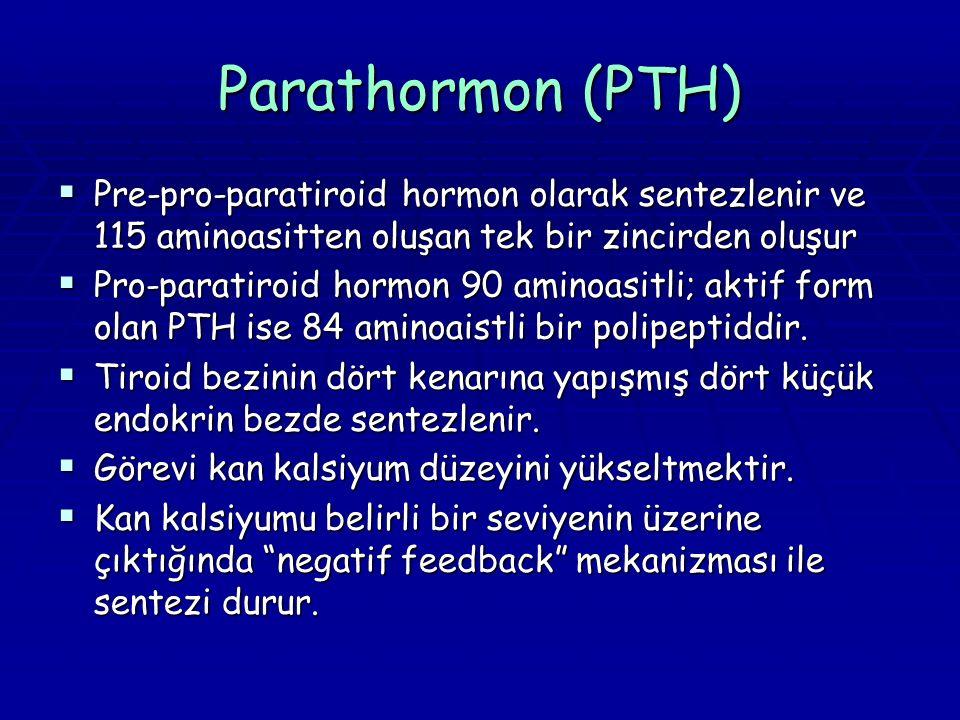 Parathormon (PTH)  Pre-pro-paratiroid hormon olarak sentezlenir ve 115 aminoasitten oluşan tek bir zincirden oluşur  Pro-paratiroid hormon 90 aminoasitli; aktif form olan PTH ise 84 aminoaistli bir polipeptiddir.