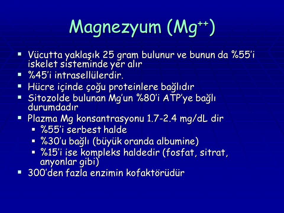 Magnezyum (Mg ++ )  Vücutta yaklaşık 25 gram bulunur ve bunun da %55'i iskelet sisteminde yer alır  %45'i intrasellülerdir.  Hücre içinde çoğu prot