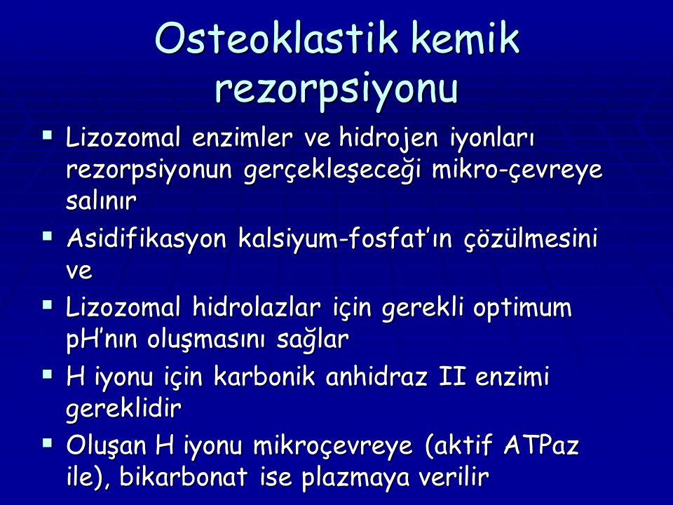 Osteoklastik kemik rezorpsiyonu  Lizozomal enzimler ve hidrojen iyonları rezorpsiyonun gerçekleşeceği mikro-çevreye salınır  Asidifikasyon kalsiyum-