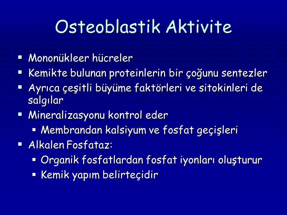 Osteoblastik Aktivite  Mononükleer hücreler  Kemikte bulunan proteinlerin bir çoğunu sentezler  Ayrıca çeşitli büyüme faktörleri ve sitokinleri de salgılar  Mineralizasyonu kontrol eder  Membrandan kalsiyum ve fosfat geçişleri  Alkalen Fosfataz:  Organik fosfatlardan fosfat iyonları oluşturur  Kemik yapım belirteçidir
