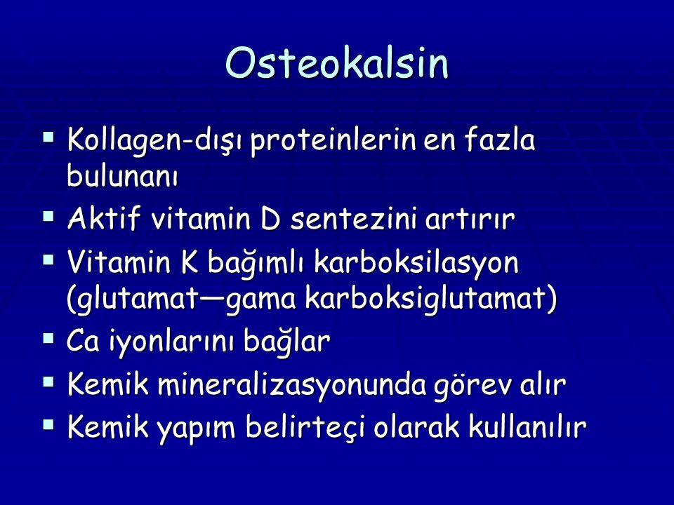 Osteokalsin  Kollagen-dışı proteinlerin en fazla bulunanı  Aktif vitamin D sentezini artırır  Vitamin K bağımlı karboksilasyon (glutamat—gama karboksiglutamat)  Ca iyonlarını bağlar  Kemik mineralizasyonunda görev alır  Kemik yapım belirteçi olarak kullanılır