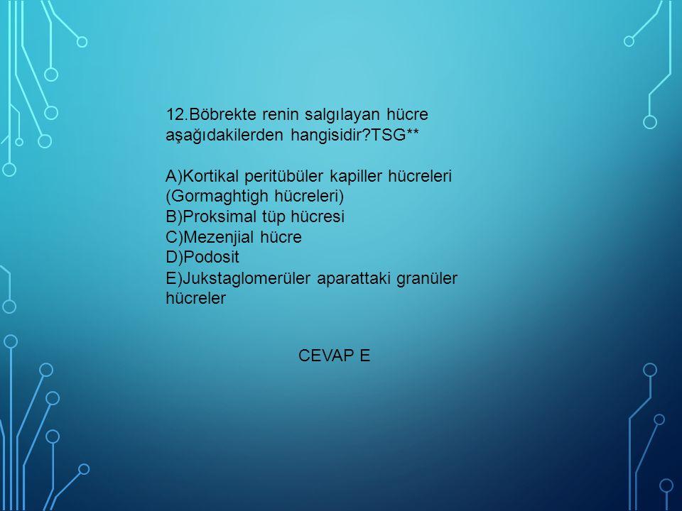 12.Böbrekte renin salgılayan hücre aşağıdakilerden hangisidir?TSG** A)Kortikal peritübüler kapiller hücreleri (Gormaghtigh hücreleri) B)Proksimal tüp