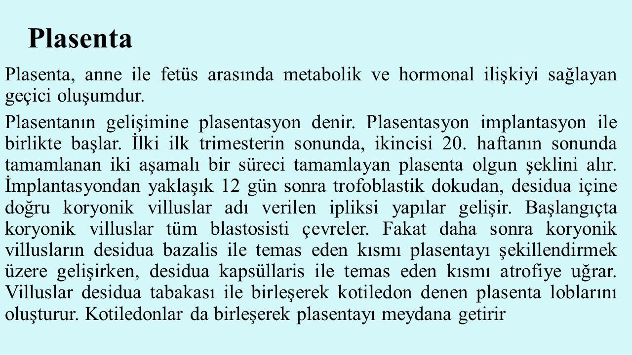 Plasenta Plasenta, anne ile fetüs arasında metabolik ve hormonal ilişkiyi sağlayan geçici oluşumdur. Plasentanın gelişimine plasentasyon denir. Plasen