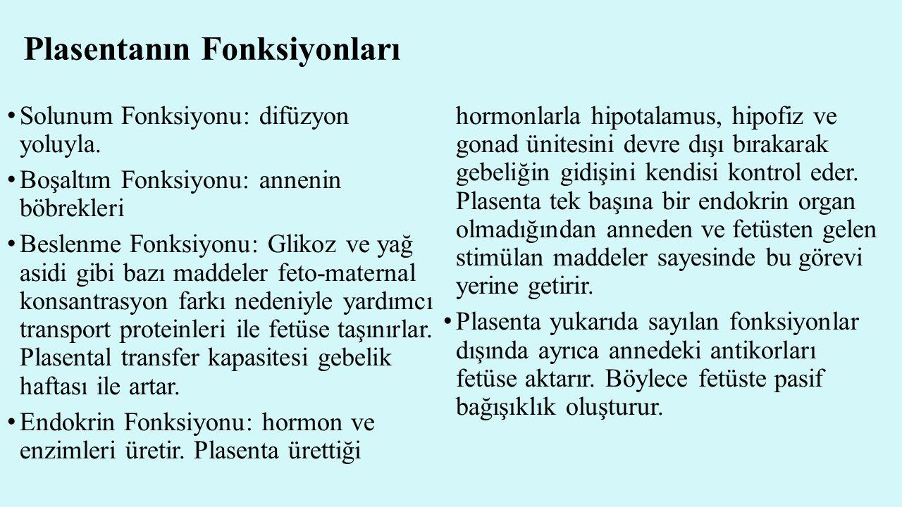 Plasentanın Fonksiyonları Solunum Fonksiyonu: difüzyon yoluyla. Boşaltım Fonksiyonu: annenin böbrekleri Beslenme Fonksiyonu: Glikoz ve yağ asidi gibi