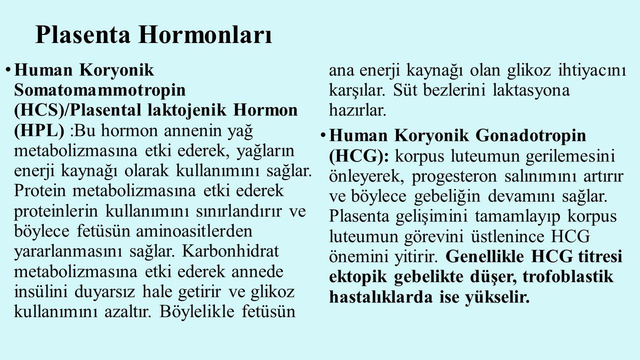 Plasenta Hormonları Human Koryonik Somatomammotropin (HCS)/Plasental laktojenik Hormon (HPL) :Bu hormon annenin yağ metabolizmasına etki ederek, yağla