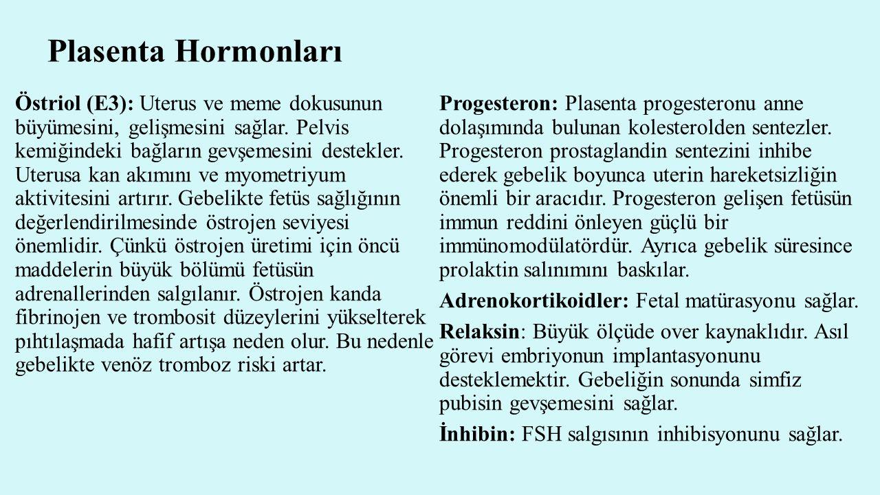 Plasenta Hormonları Östriol (E3): Uterus ve meme dokusunun büyümesini, gelişmesini sağlar. Pelvis kemiğindeki bağların gevşemesini destekler. Uterusa