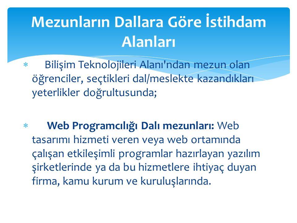 Web Programcılığı Dalı  Bilgisayar sistemlerinin donanım ve yazılım olarak kurulumu bilgilerinin yanında, web sitesi tasarımına ve programlama dilleri yardımıyla etkileşimli web uygulamaları hazırlanmasına yönelik eğitim ve öğretim verilen daldır.