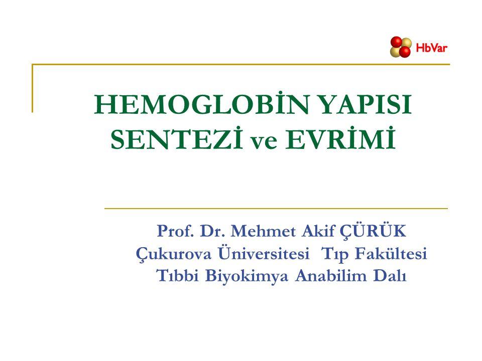 HEMOGLOBİN YAPISI SENTEZİ ve EVRİMİ Prof. Dr.