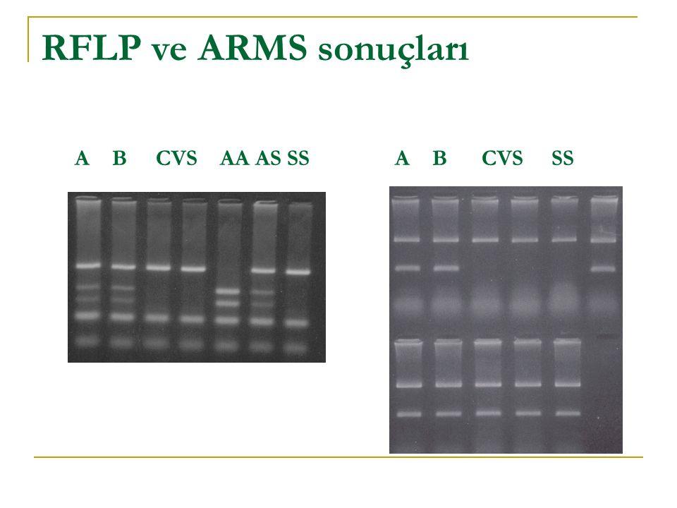 RFLP ve ARMS sonuçları A B CVS AA AS SS A B CVS SS