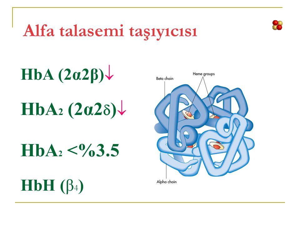 Alfa talasemi taşıyıcısı HbA (2α2β)  HbA 2 (2α2  )  HbA 2 <%3.5 HbH (β 4 )