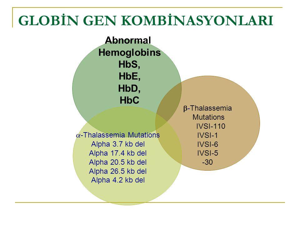 -Thalassemia Mutations Alpha 3.7 kb del Alpha 17.4 kb del Alpha 20.5 kb del Alpha 26.5 kb del Alpha 4.2 kb del GLOBİN GEN KOMBİNASYONLARI