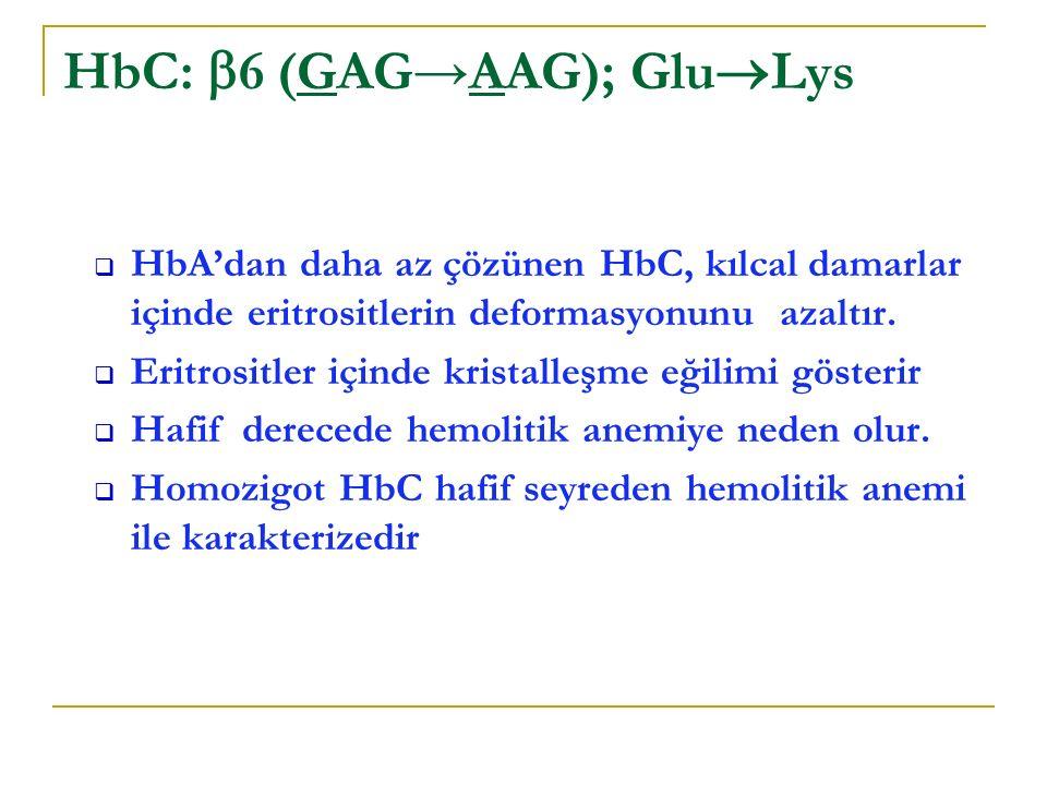  HbA'dan daha az çözünen HbC, kılcal damarlar içinde eritrositlerin deformasyonunu azaltır.