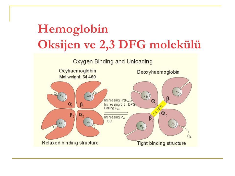 Normal insan hemoglobinleri Embriyonik Hemoglobinler Fetal Hemoglobin Erişkin Hemoglobinleri Hb Gower 1 (ζ 2 ε 2 )Hb F (α 2 γ 2 )Hb A (α 2 β 2 ) Hb Gower 2 (α 2 ε 2 )Hb A 2 (α 2 δ 2 ) Hb Portland (ζ 2 γ 2 )