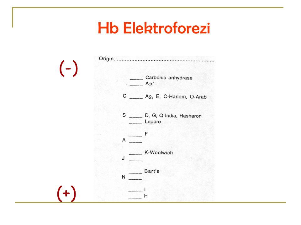 Hb Elektroforezi (-) (+)
