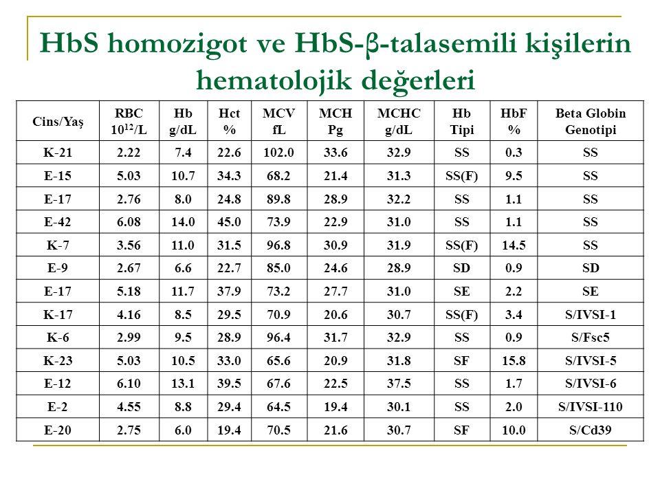 HbS homozigot ve HbS-β-talasemili kişilerin hematolojik değerleri Cins/Yaş RBC 10 12 /L Hb g/dL Hct % MCV fL MCH Pg MCHC g/dL Hb Tipi HbF % Beta Globin Genotipi K-212.227.422.6102.033.632.9SS0.3SS E-155.0310.734.368.221.431.3SS(F)9.5SS E-172.768.024.889.828.932.2SS1.1SS E-426.0814.045.073.922.931.0SS1.1SS K-73.5611.031.596.830.931.9SS(F)14.5SS E-92.676.622.785.024.628.9SD0.9SD E-175.1811.737.973.227.731.0SE2.2SE K-174.168.529.570.920.630.7SS(F)3.4S/IVSI-1 K-62.999.528.996.431.732.9SS0.9S/Fsc5 K-235.0310.533.065.620.931.8SF15.8S/IVSI-5 E-126.1013.139.567.622.537.5SS1.7S/IVSI-6 E-24.558.829.464.519.430.1SS2.0S/IVSI-110 E-202.756.019.470.521.630.7SF10.0S/Cd39