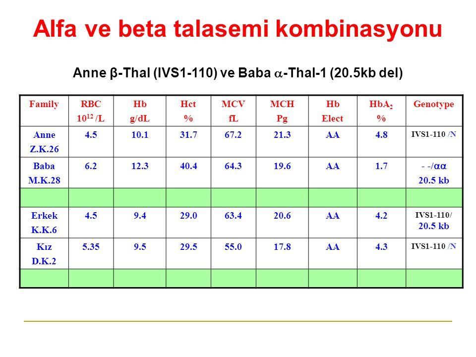 FamilyRBC 10 12 /L Hb g/dL Hct % MCV fL MCH Pg Hb Elect HbA 2 % Genotype Anne Z.K.26 4.54.510.131.767.221.3AA4.8 IVS1-110 /N Baba M.K.28 6.26.212.312.340.464.319.6A1.7 - -/  20.5 kb Erkek K.K.6 4.59.49.429.063.420.6AA4.2 IVS1-110/ 20.5 kb Kız D.K.2 5.359.529.555.017.8A4.3 IVS1-110 /N Alfa ve beta talasemi kombinasyonu Anne β-Thal (IVS1-110) ve Baba  -Thal-1 (20.5kb del)