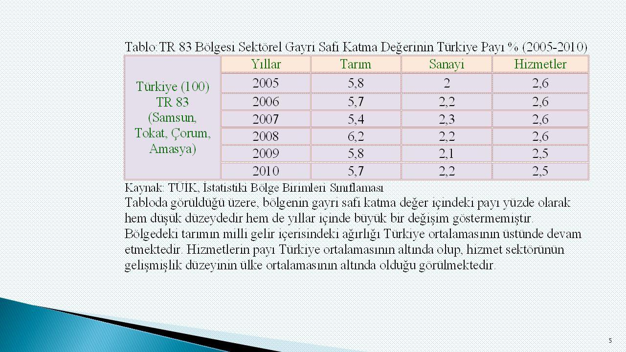  DPT'nin 2003 yılında İllerin ve Bölgelerin Sosyo-Ekonomik Gelişmişlik Sıralaması Tokat illerinin sosyo-ekonomik gelişmişlik sıralamasındaki yeri 61'dir.