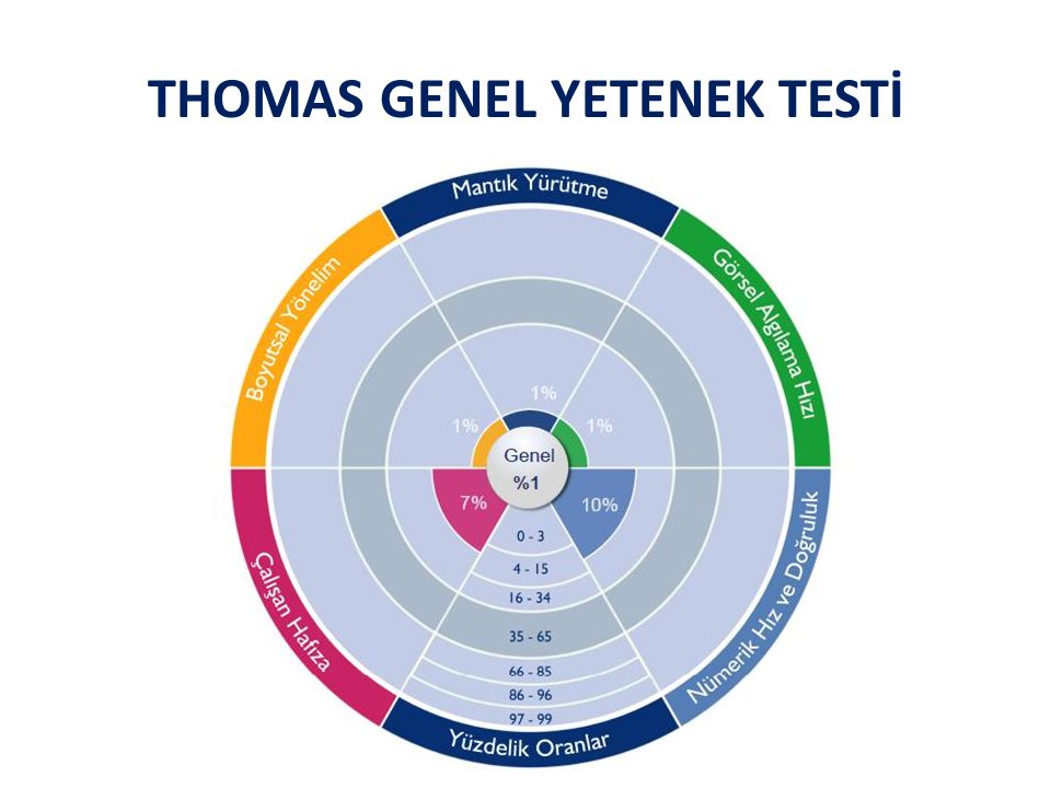 THOMAS GENEL YETENEK TESTİ