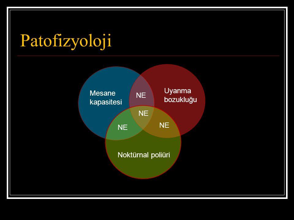 Patofizyoloji Mesane kapasitesi Uyanma bozukluğu Noktürnal poliüri NE
