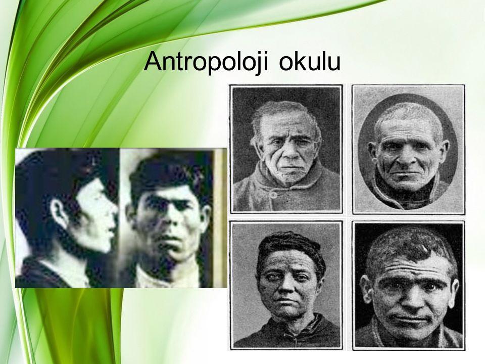 Antropoloji okulu