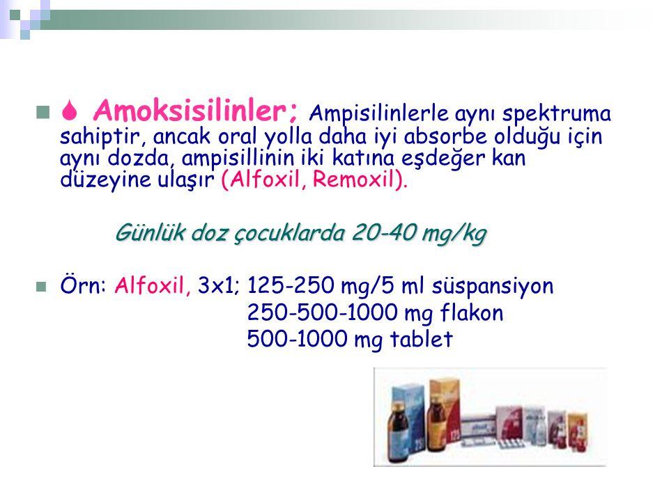  Amoksisilinler; Ampisilinlerle aynı spektruma sahiptir, ancak oral yolla daha iyi absorbe olduğu için aynı dozda, ampisillinin iki katına eşdeğer ka
