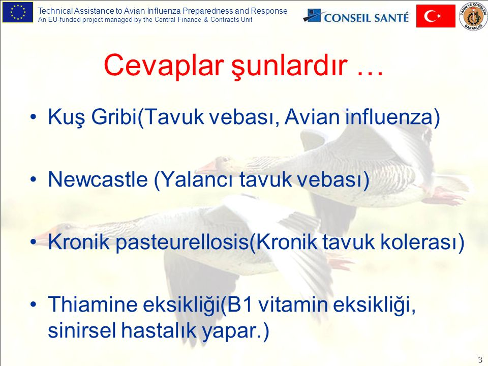 Technical Assistance to Avian Influenza Preparedness and Response An EU-funded project managed by the Central Finance & Contracts Unit 34 Diğer Hastalıklar