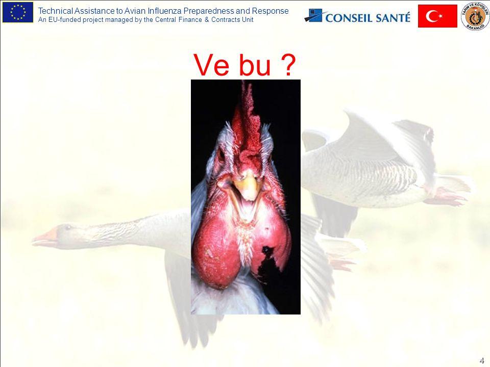 Technical Assistance to Avian Influenza Preparedness and Response An EU-funded project managed by the Central Finance & Contracts Unit 35 Zehirlenmeler: Bazı Örnekler Diazinon: haşerelerin kontrolünde yaygın olarak kullanılır.