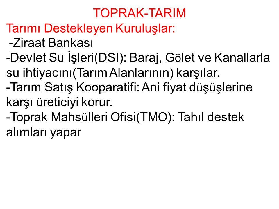 TOPRAK-TARIM Tarımı Destekleyen Kuruluşlar: -Ziraat Bankası -Devlet Su İşleri(DSI): Baraj, G ö let ve Kanallarla su ihtiyacını(Tarım Alanlarının) karşılar.
