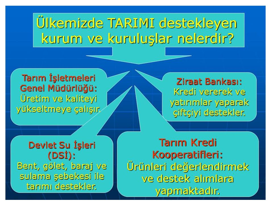 Teorik olanlar T ü rk ç e, Arap ç a, edebiyat, Fars ç a, tarih, fen bilimleri, cebir ve İslami bilimlerdir.