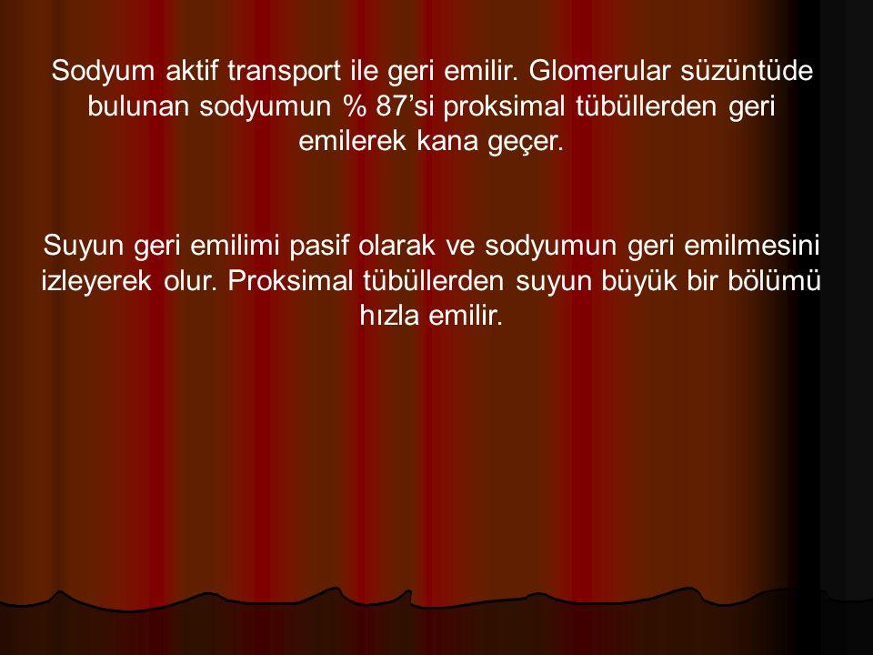 Sodyum aktif transport ile geri emilir.