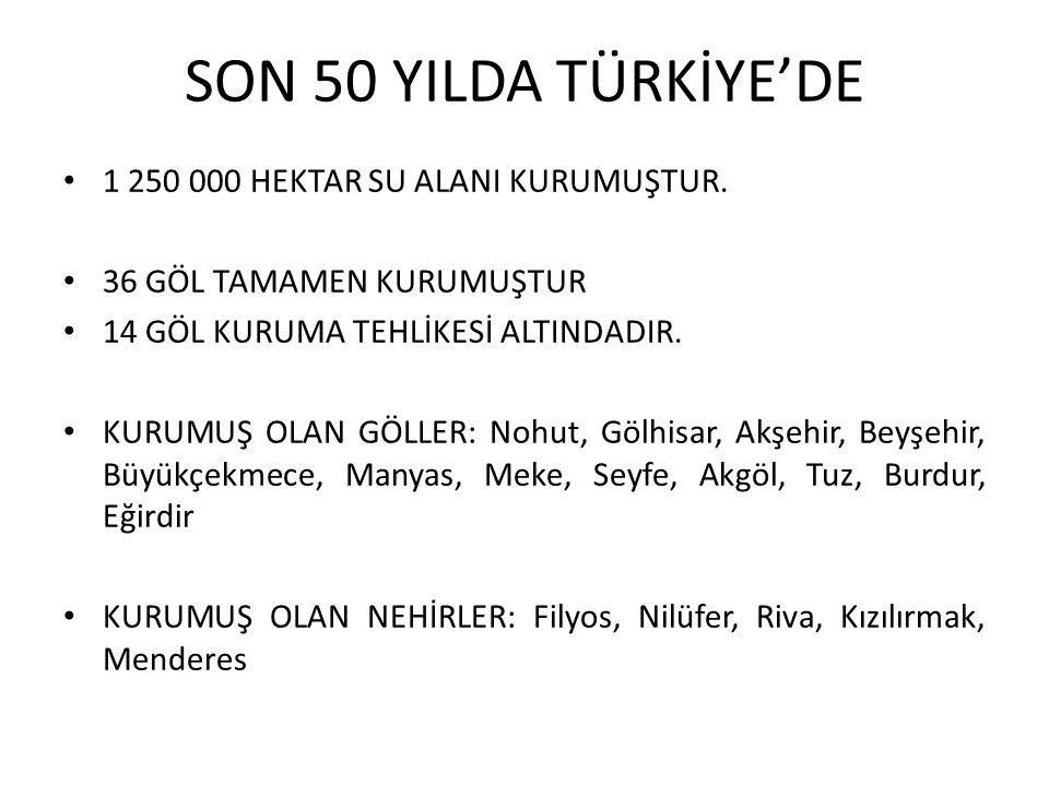 SON 50 YILDA TÜRKİYE'DE 1 250 000 HEKTAR SU ALANI KURUMUŞTUR.