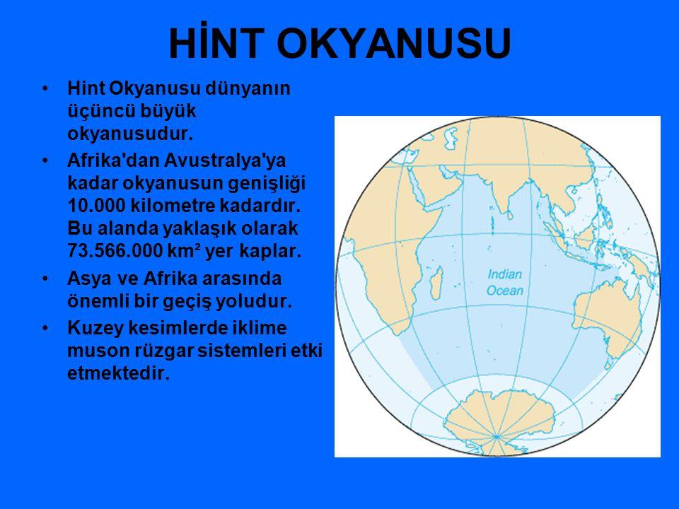 HİNT OKYANUSU Hint Okyanusu dünyanın üçüncü büyük okyanusudur.