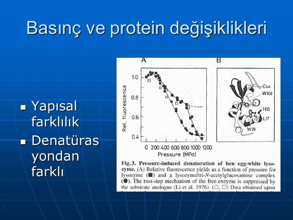 Basınç ve protein değişiklikleri Yapısal farklılık Yapısal farklılık Denatüras yondan farklı Denatüras yondan farklı