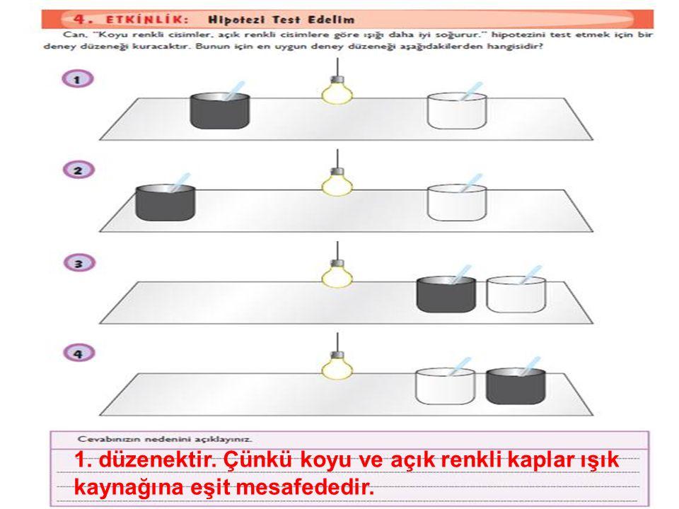 1. düzenektir. Çünkü koyu ve açık renkli kaplar ışık kaynağına eşit mesafededir.
