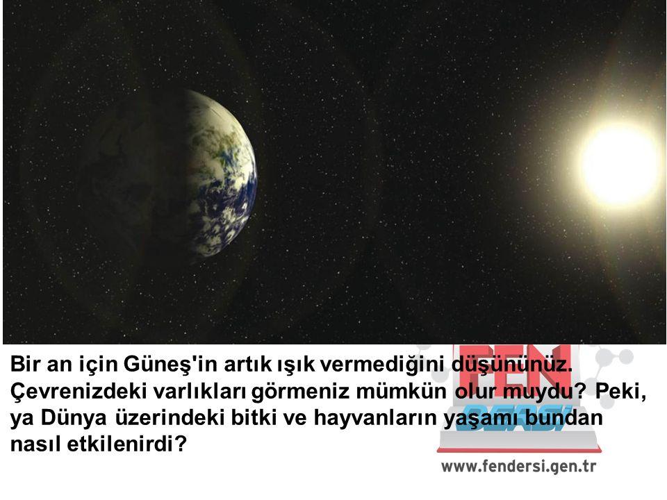Bir an için Güneş in artık ışık vermediğini düşününüz.