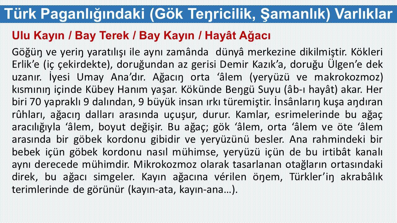 Türk Paganlığındaki (Gök Teŋricilik, Şamanlık) Varlıklar Ulu Kayın / Bay Terek / Bay Kayın / Hayât Ağacı Göğüŋ ve yeriŋ yaratılışı ile aynı zamânda dü