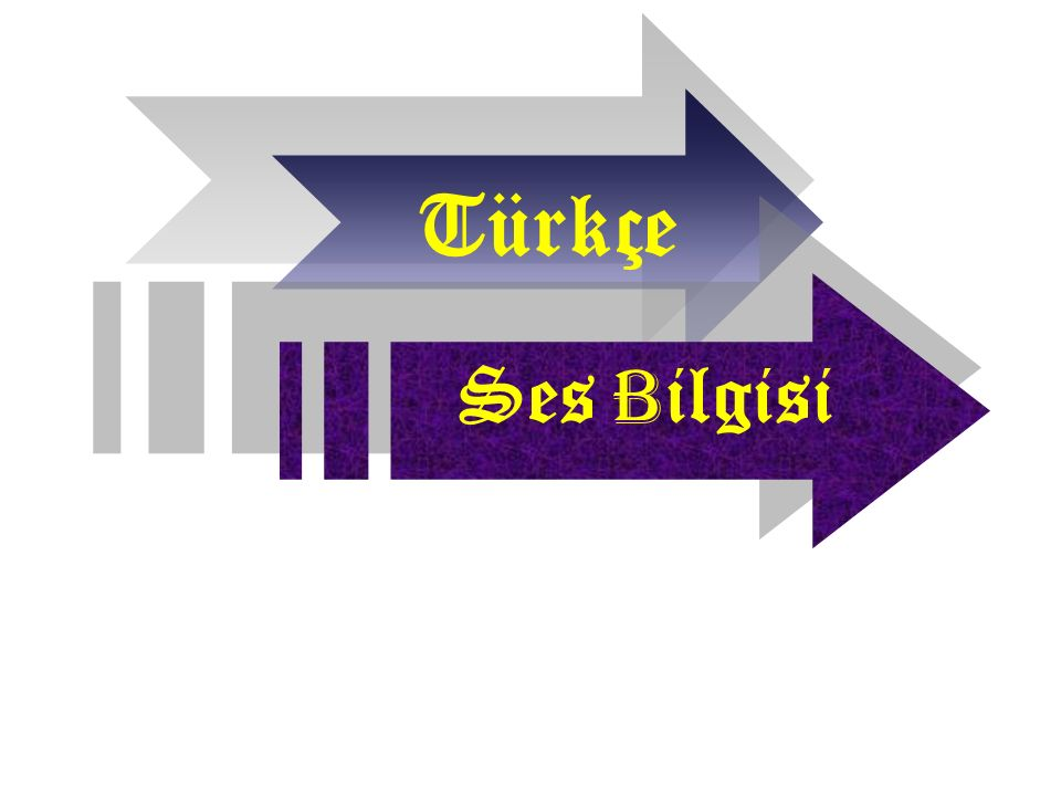 Türkçe Ses B ilgisi
