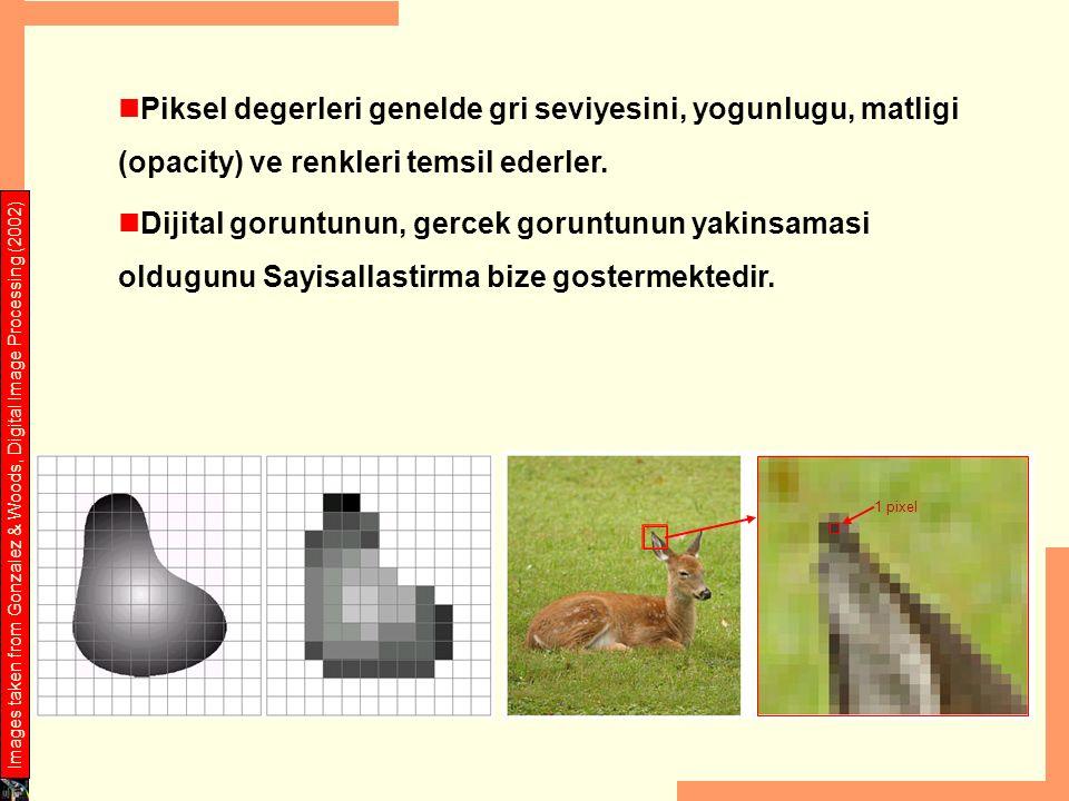 Piksel degerleri genelde gri seviyesini, yogunlugu, matligi (opacity) ve renkleri temsil ederler. Dijital goruntunun, gercek goruntunun yakinsamasi ol