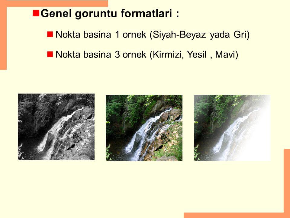 Genel goruntu formatlari : Nokta basina 1 ornek (Siyah-Beyaz yada Gri) Nokta basina 3 ornek (Kirmizi, Yesil, Mavi)