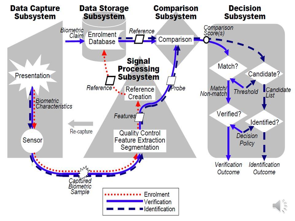 GENEL BİR BİYOMETRİK SİSTEMİN BİLEŞENLERİ: Veri toplama Veri aktarma İşaret/görüntü işleme Veri depolama Karşılaştırma Karar verme Uygulama 5