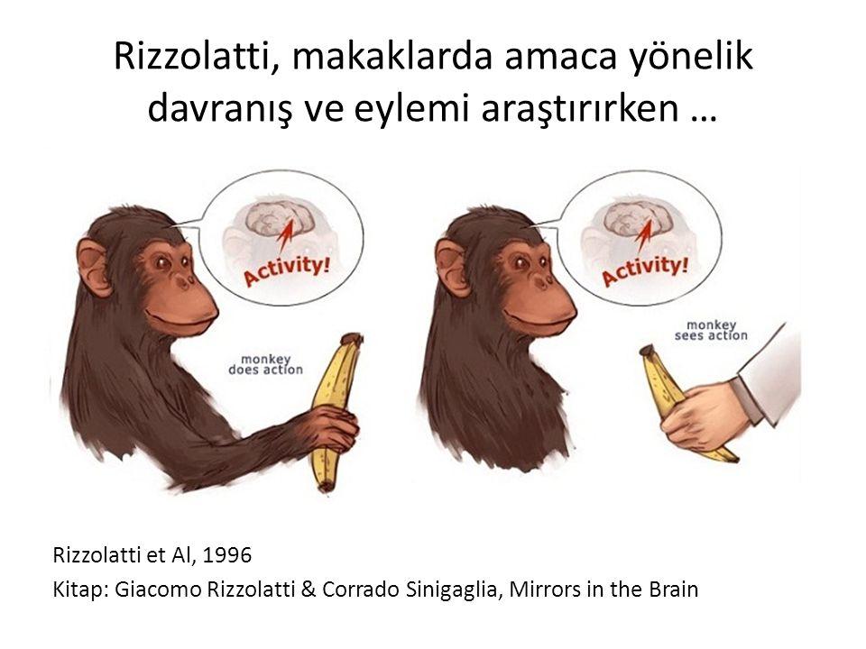 Rizzolatti, makaklarda amaca yönelik davranış ve eylemi araştırırken … Rizzolatti et Al, 1996 Kitap: Giacomo Rizzolatti & Corrado Sinigaglia, Mirrors