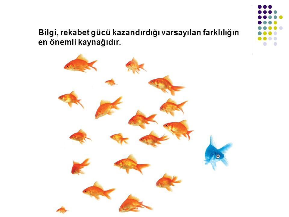Bilgi, rekabet gücü kazandırdığı varsayılan farklılığın en önemli kaynağıdır.