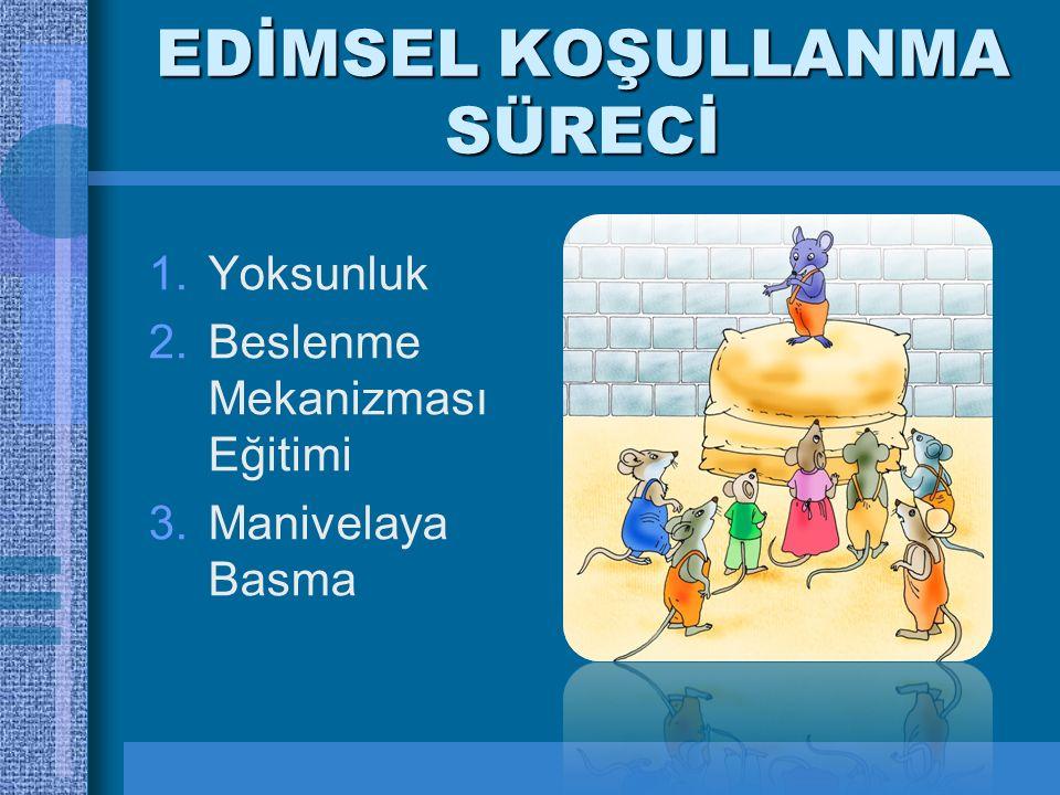 EDİMSEL KOŞULLANMA SÜRECİ 1.Yoksunluk 2.Beslenme Mekanizması Eğitimi 3.Manivelaya Basma