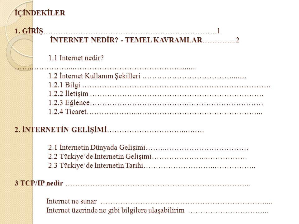 TCP/IP nedir.