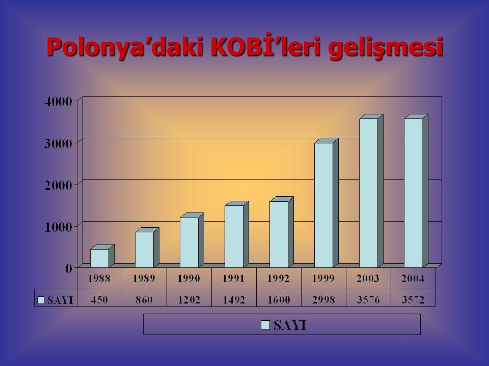 Polonya'daki KOBİ'leri gelişmesi